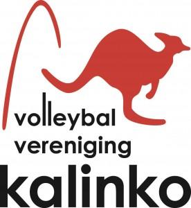 Volleyball vereniging Kalinko