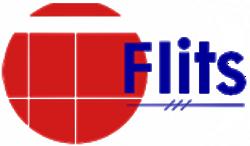 VV Flits
