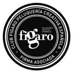 club figaro peluquería creativa española