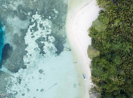 The Banda Sea : 900 nautical miles of exploration