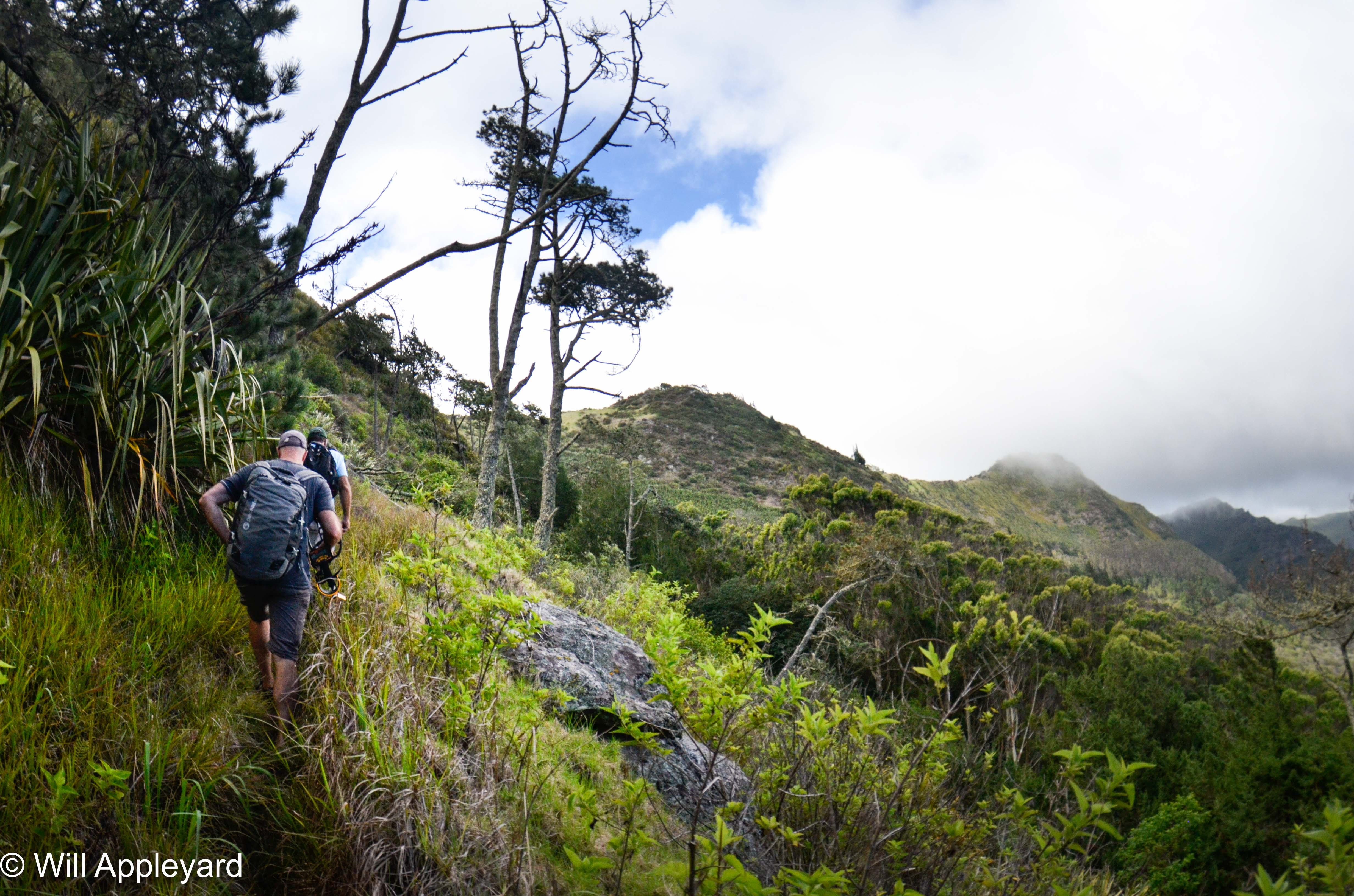 Hiking Saint Helena