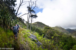 Hiking Saint Helena