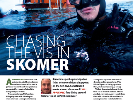 Skomer Island : A feature for DIVER magazine feature