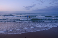 Norfolk Surfers