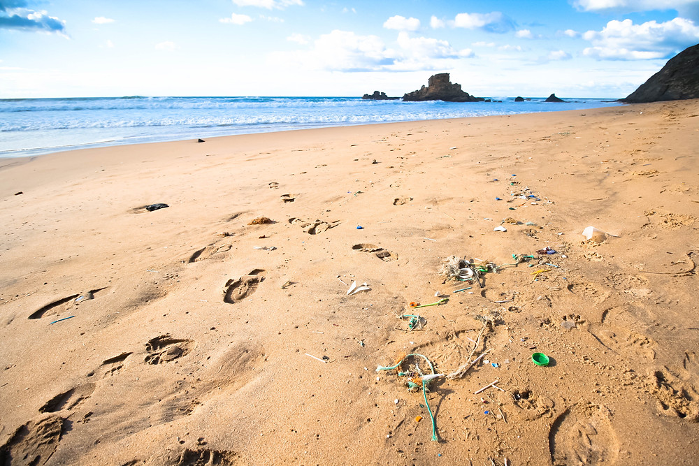 Portugal, a plastic tide-line