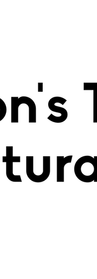 The Transgender District (first logo)