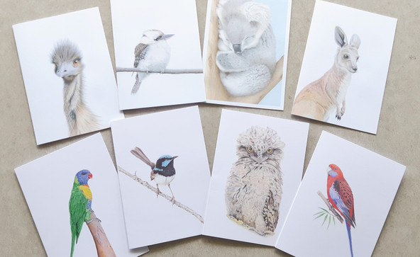Greeting card collection