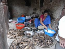 Katmundu Nepal