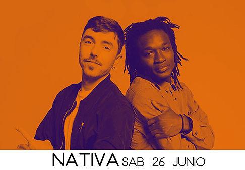 NativaWeb.jpg