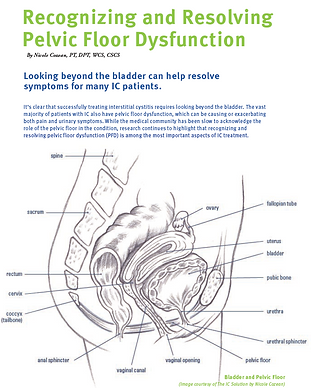 ICA Update Recognizing and Resolving Pel