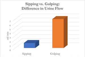 Sipping vs Gulping for Bladder Health