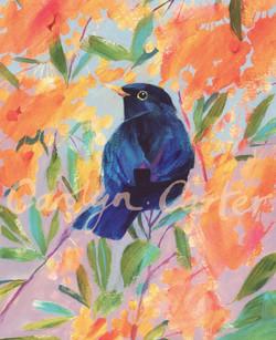 Blackbird by Carolyn Carter