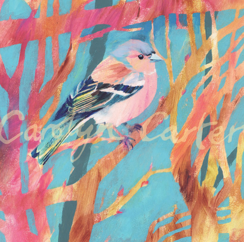 Chaffinch by Carolyn Carter