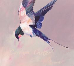 Swallow's Flight