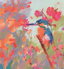 Waiting Kingfisher
