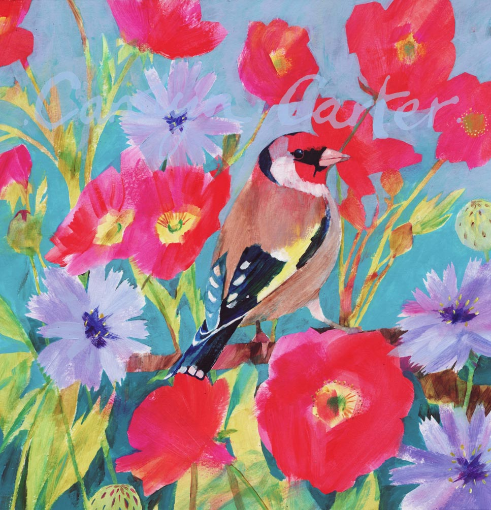 Goldfinch by Carolyn Carter