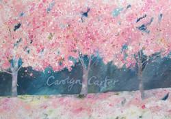 Blossom Three by Carolyn Carter