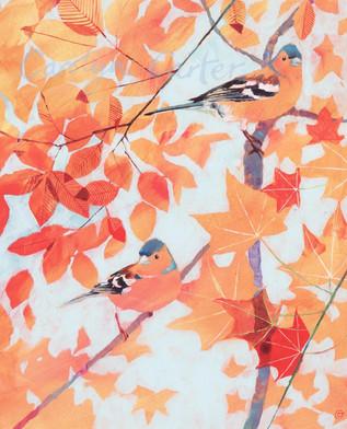 Autumn Perch