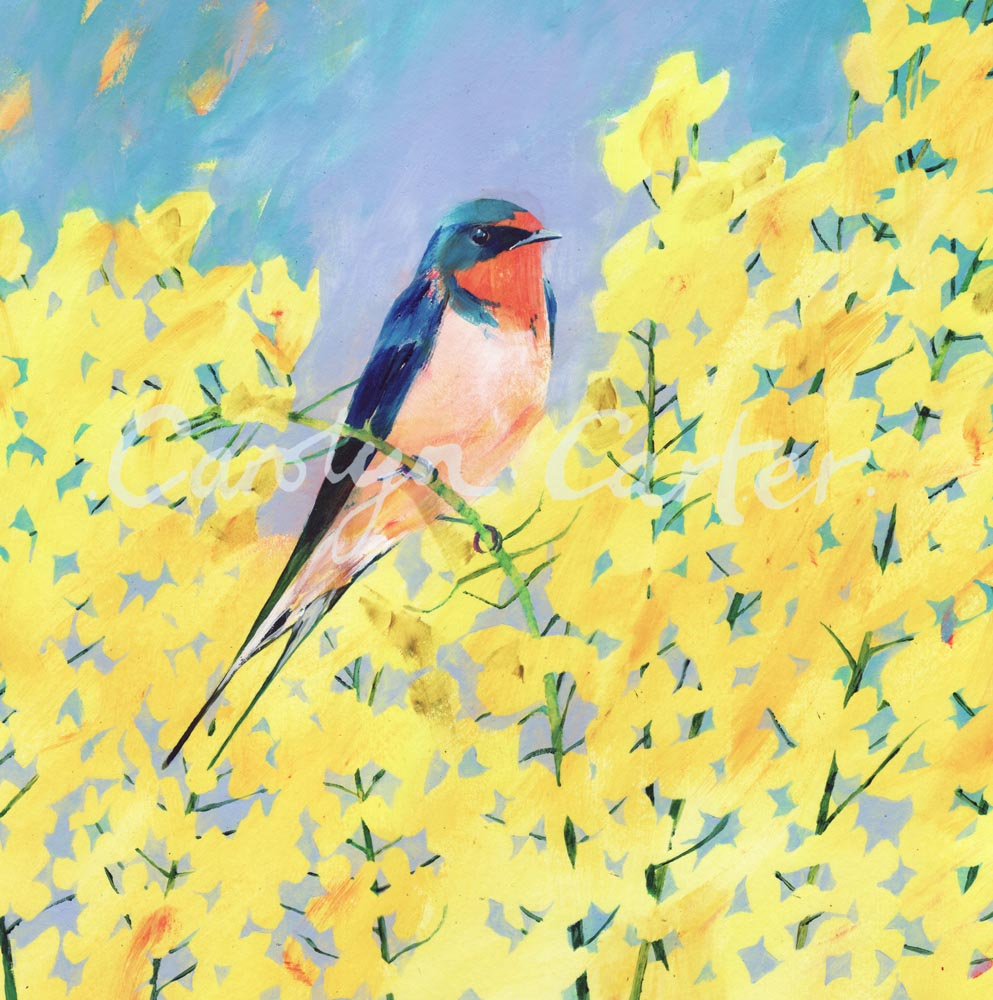 Summer Swallow by Carolyn Carter