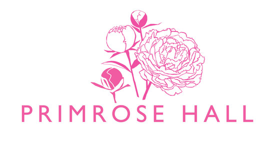 Logo Design & Brand
