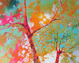 Oak Splendour