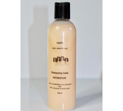 Réparateur shampoing