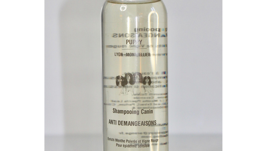 Anti demangeaisons shampoing