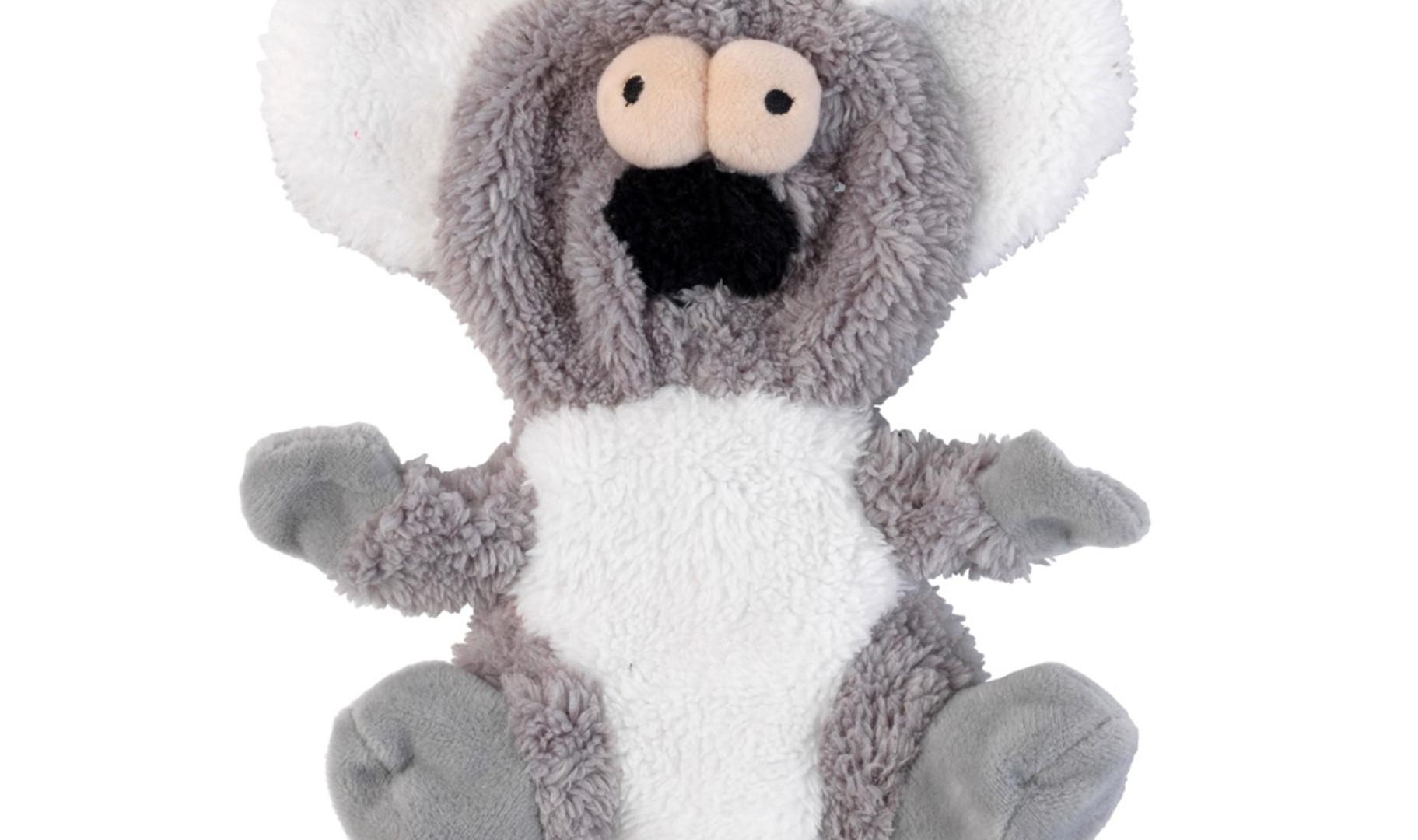 Kana le koala