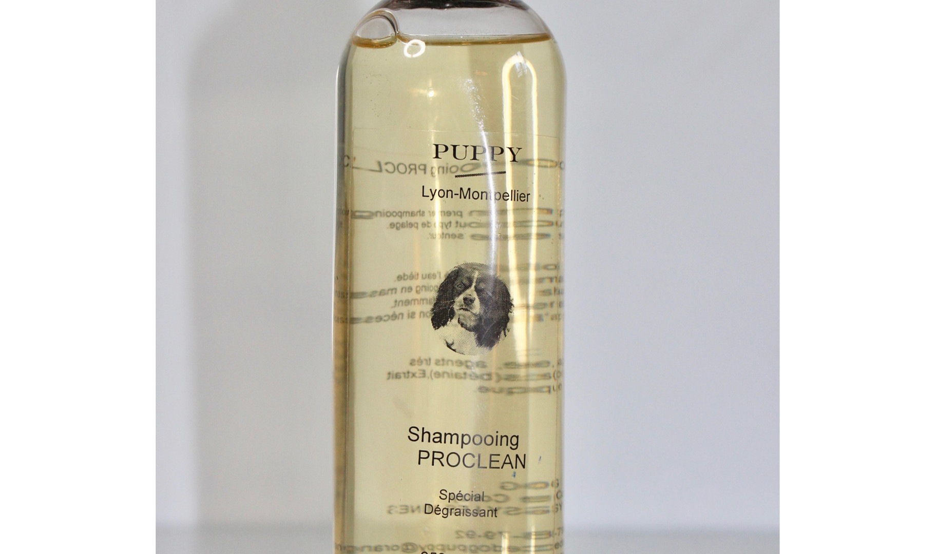 Proclean shampoing