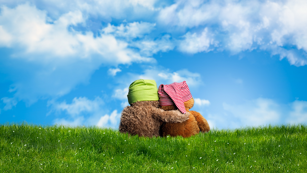 Two teddy bears sit in the grass with their backs facing front and the left bear has its arm around the other.