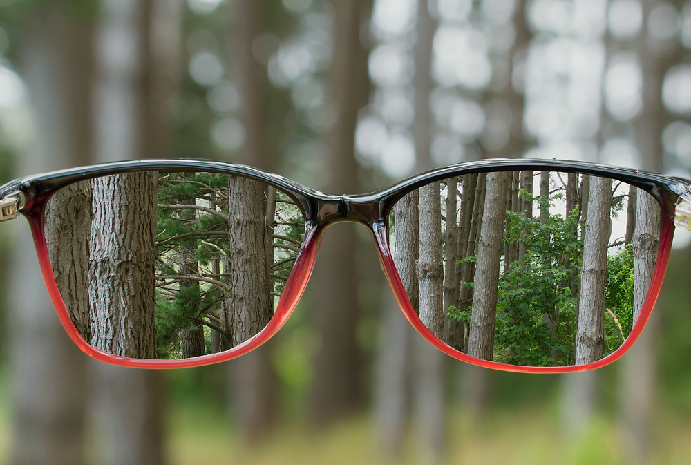 Looking at trees in a forest through the lens of a pair of glasses