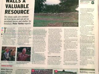 Irish Farmers Journal story on dry stone walls