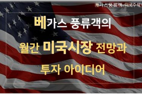 미국시황과 투자 아이디어 2021년 2월호