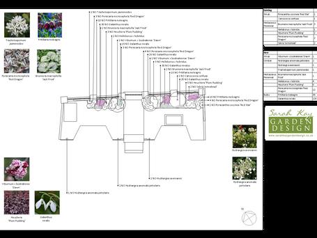 N16 Victorian Front Garden Planting Design