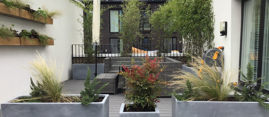 E20 Dog Friendly Courtyard and Contemporary Roof Terrace - Testimonial