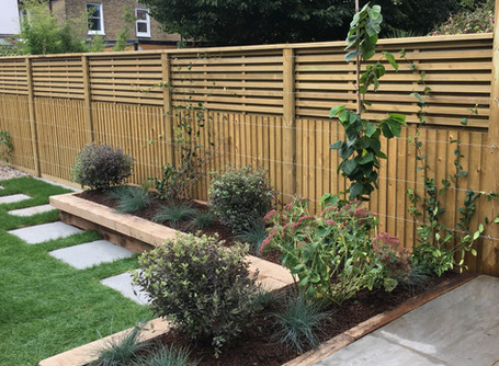 E11 Wanstead Family Garden - the planting