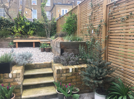 Self isolation - how your garden can help
