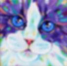 Cat, Kitten, Cat art, Colourful animal art, Evei Art, Eve Izzett
