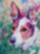 Dog, Dog art, Custom pet portraits, Pet portraits from photographs, Evei Art, Eve Izzett