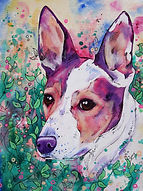 Dog, Dog art, Custom pet portraits, Pet portraits from photographs, Evei Art, Eve Izzett