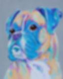 Boxer dog, Pastel dog art, Dog painting, Order pet portraits online, Evei Art, Eve Izzett
