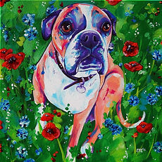 Boxer dog, Boxer art, Boxer dog portrait, Custom pet art, Pet portrait, Eve Izzett, Evei Art