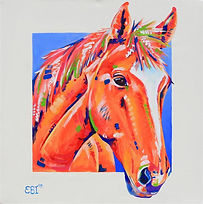 Custom Horse portraits, Horse portraits in Australia, Pet Portraits, Evei Art, Eve Izzett