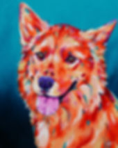 Dog paiting, Colorful pet art, Dog portraits, Australian Artists, Evei Art, Eve Izzett