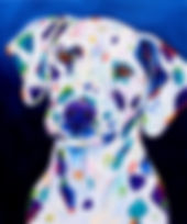 Dalmatian Dog, Dog portraits, Animal artists, Evei Art, Eve Izzett
