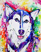 Husky dog, Husky painting, Custom pet art, Pet portraits Australia, Evei Art, Eve Izzett