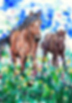 Mare and foal, Custom pet portraits, Pet portraits Australia, Animal artists, Evei Art, Eve Izzett