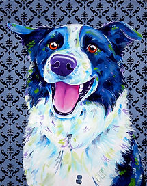 Pet portraits Australia, Pet portraits from photos, Border collie art, Evei Art, Eve Izzett