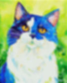 Cat painting, Colourful pet art, Custom cat portraits, Evei Art, Eve Izzett