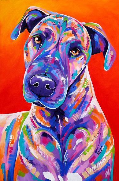 Pet portraits Australia, Dog portrait from photos, Colorful pet paintings, Evei Art, Eve Izzett
